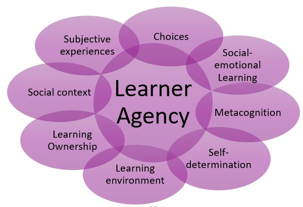 Supporting learner agency has 8 components: metacognition, self-determination, learning environment, learning ownership, social context, subjective experiences, choices, social-emotional learning.
